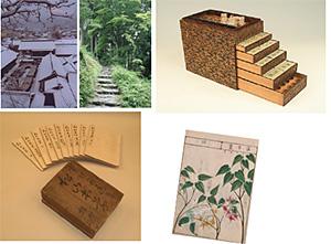 緒方洪庵の薬箱(右上:阪大蔵)、森野旧薬園と松山本草(他:森野家蔵)
