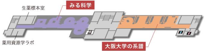 みる科学/大阪大学の系譜/生薬標本室/薬用資源学ラボ